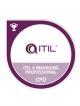 ITIL Managing Professional Transition Exam